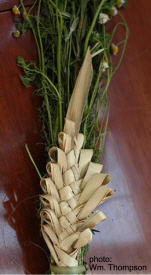 Woven Palm Fronds for Palm Sunday, Holy week, Mexico