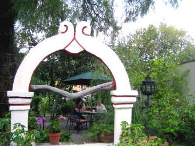 Garden of Café San Antonio